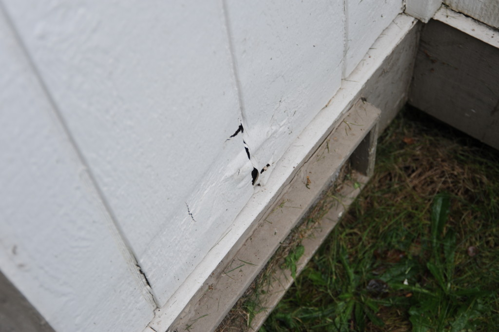 Hole in siding near faucet.  Replace that portion of siding.