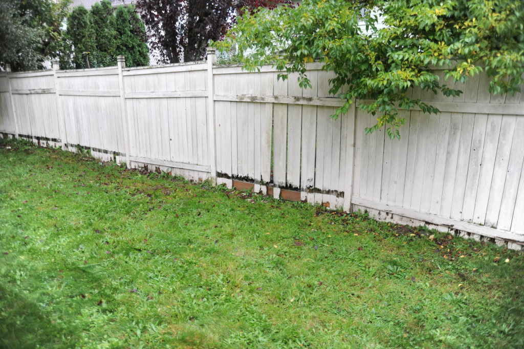 Fence is in disrepair and has some dry rot.  Might be an easier fix than it looks, and put some shrubs in front of the fence.