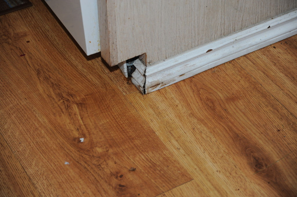 Damaged baseboards, water damage on floor.
