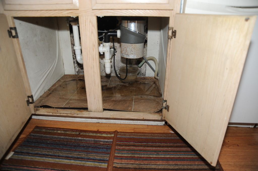 Standing water, and water damage under the sink.  Recommend a qualified plumber do the repairs.