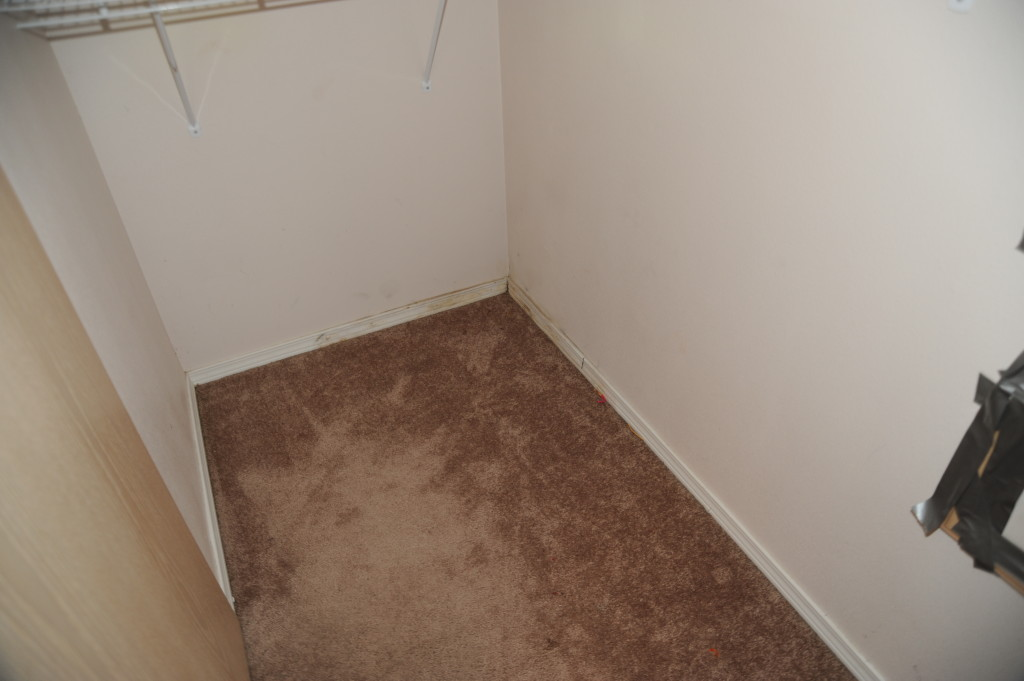 Closet, master bath, paint, replace baseboards.  Possibly replace doors with 6 panel doors.